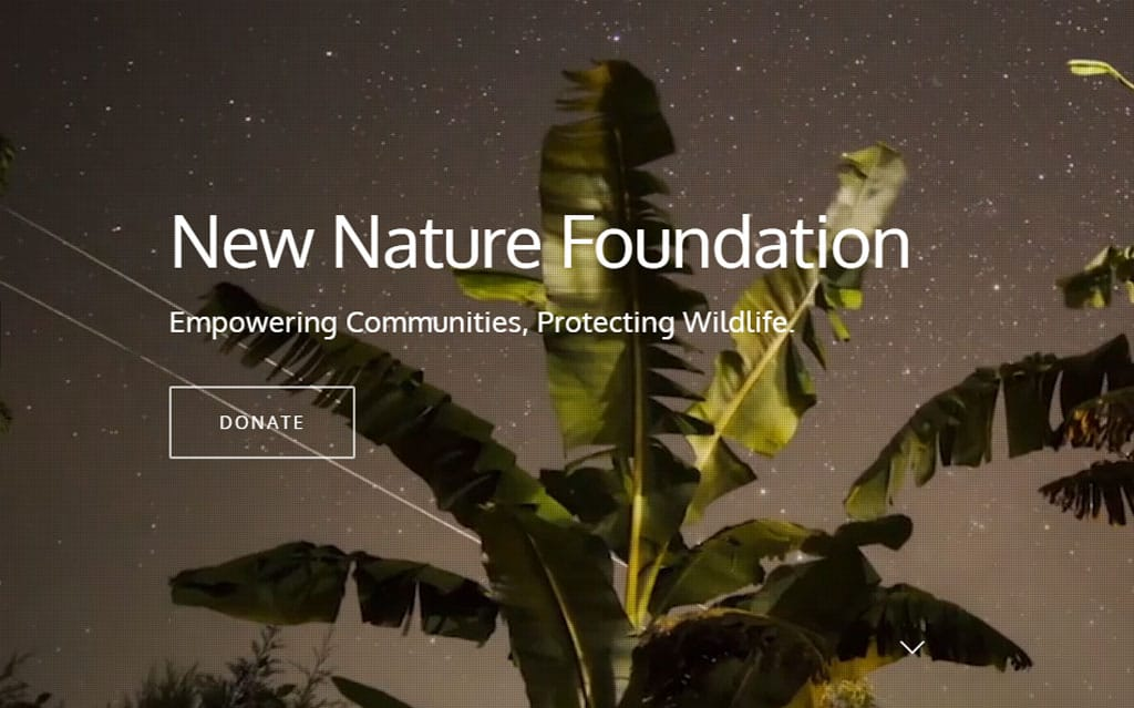 New Nature Foundation